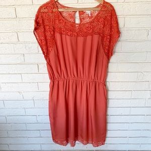 Katia lace cut out dress